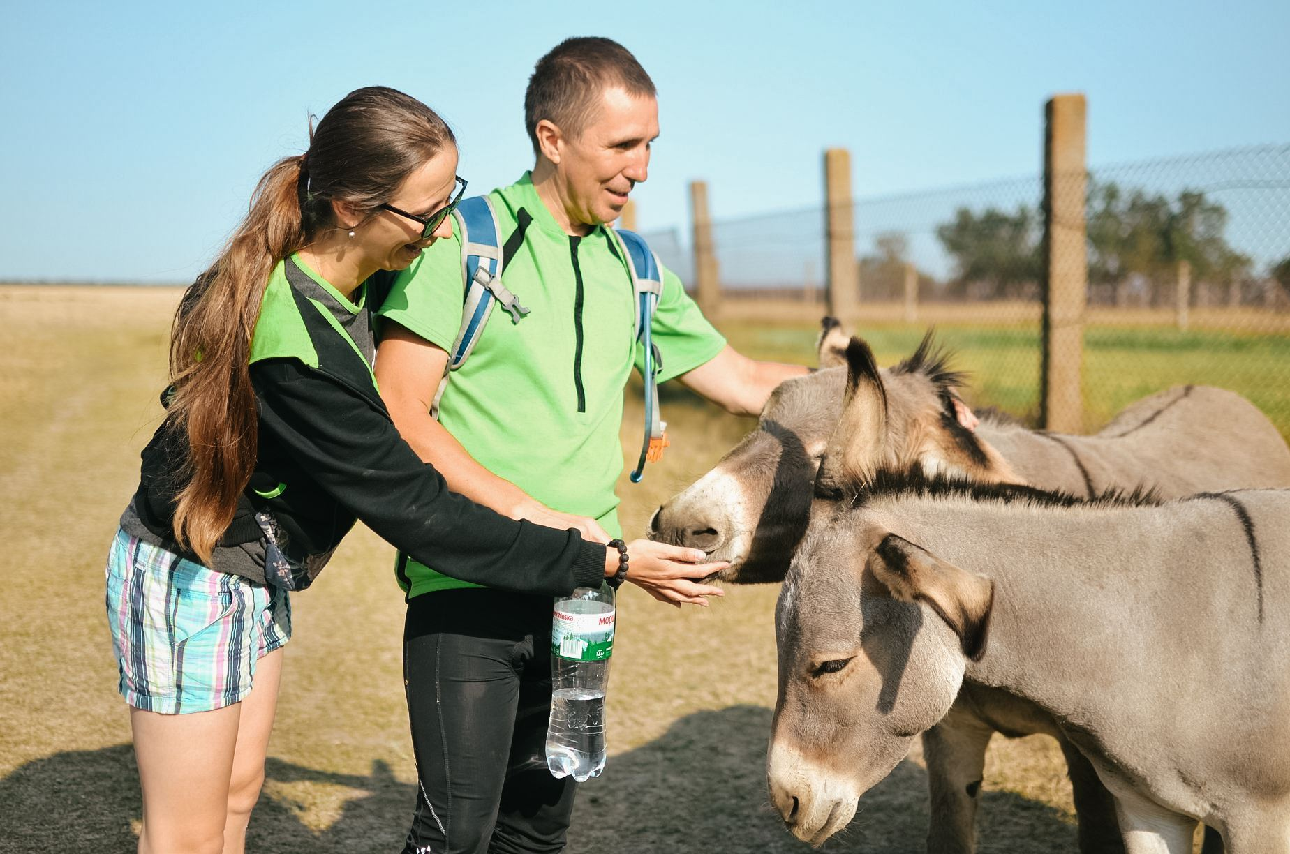 A woman and a man are petting two brown donkeys. The people are smiling. The man is holding a water bottle in his right hand. The woman is wearing sunglasses.